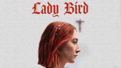 لیدی برد